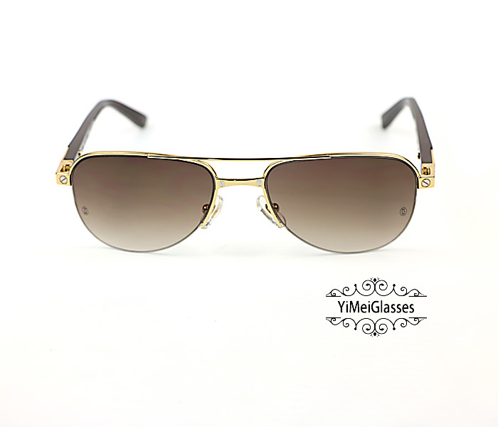 Cartier Acetate&Metal Half Frame Double Bridge Design Sunglasses CT6101002插图7