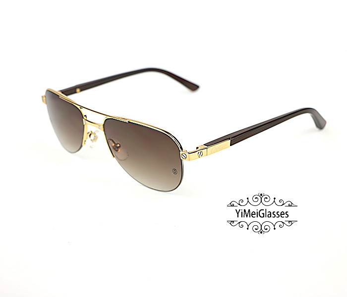 Cartier Acetate&Metal Half Frame Double Bridge Design Sunglasses CT6101002插图8