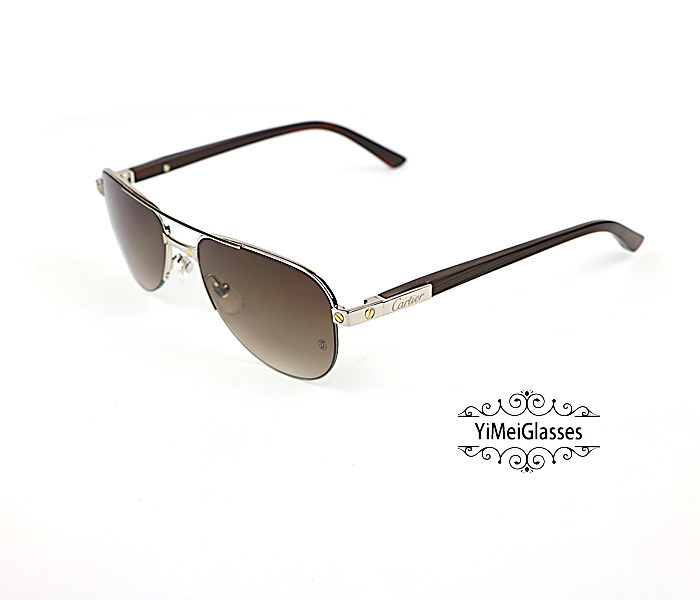 Cartier Acetate&Metal Half Frame Double Bridge Design Sunglasses CT6101002插图10