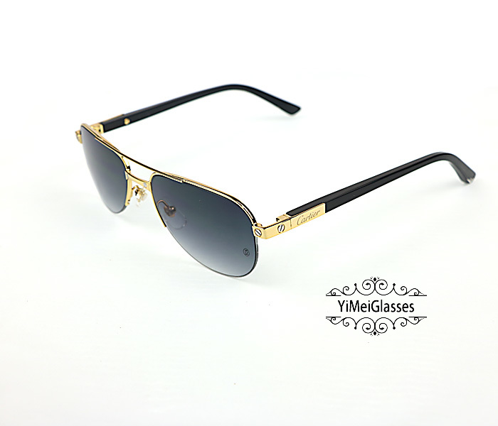 Cartier Acetate&Metal Half Frame Double Bridge Design Sunglasses CT6101002插图14