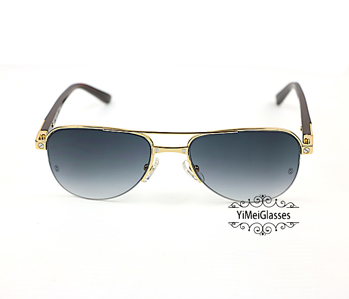 Cartier Acetate&Metal Half Frame Double Bridge Design Sunglasses CT6101002插图19