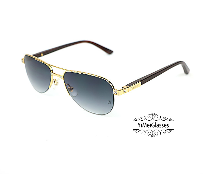 Cartier Acetate&Metal Half Frame Double Bridge Design Sunglasses CT6101002插图20