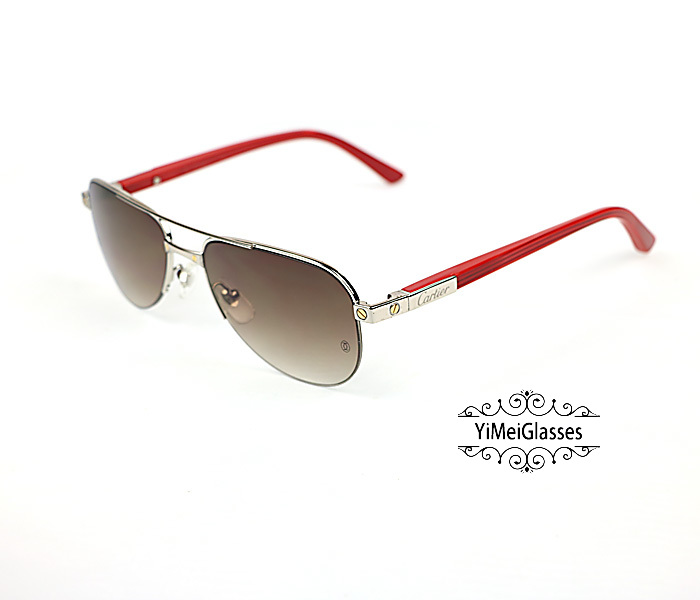 Cartier Acetate&Metal Half Frame Double Bridge Design Sunglasses CT6101002插图22