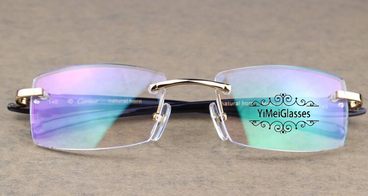 Cartier PANTHÈRE Rimless Horn EyeGlasses CT6738032插图(17)